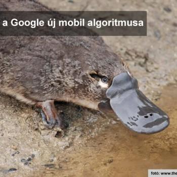 Platypus a Google új mobil algoritmusa