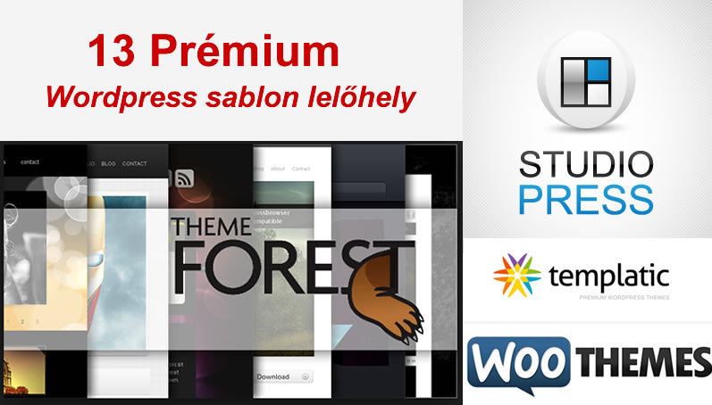 13 prémium wordpress sablon