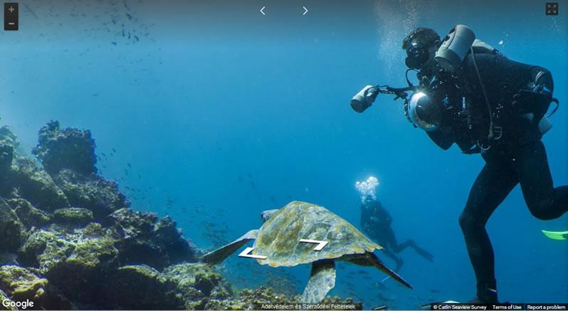 Google kamerái Galapagoson a tenger alatt
