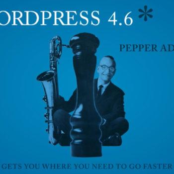 wordpress-46-kiemelt