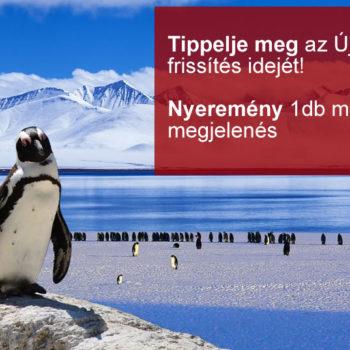 Google Pingvin 4.0 vajon szeptember 27-én lesz?