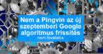 Nem a Pingvin az új szeptemberi Google algoritmus frissítés – Nem hivatalos
