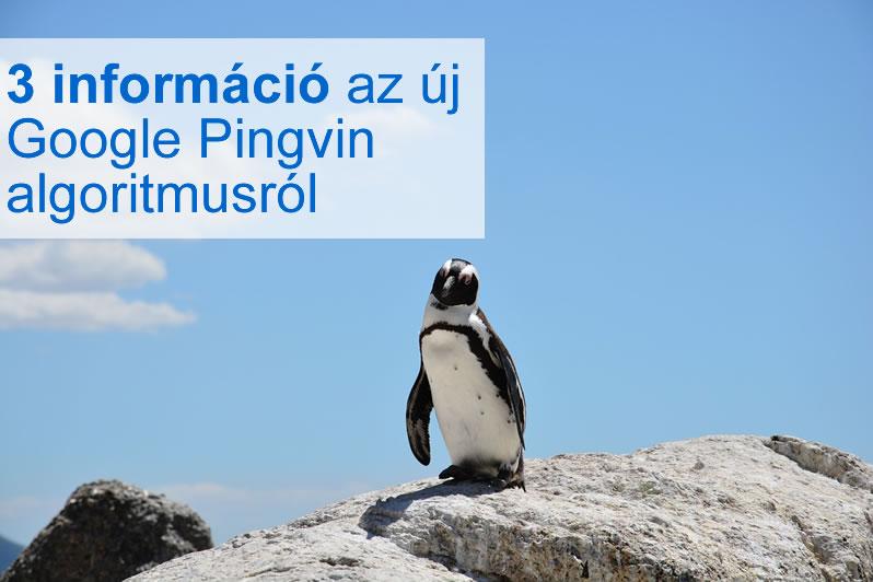 3 új információ az új Google Pingvin 4.0 algoritmusról